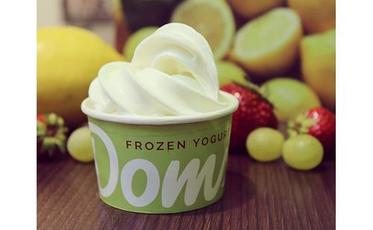 Doms Frozen Yogurt