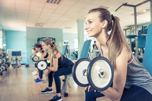 Franchise-Marktstudie Fitnees 2016-1