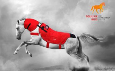 Equusir Deutschland GmbH