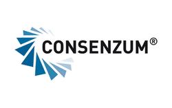 CONSENZUM Managementberatung