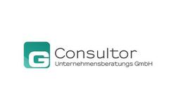 Consultor start up
