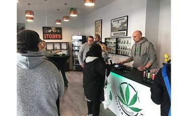Mister Cannabis