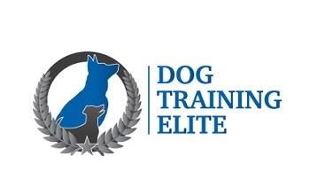 Start A Dog Training Elite Franchise Dog Training Elite Franchise Opportunity For Sale Franchise Direct
