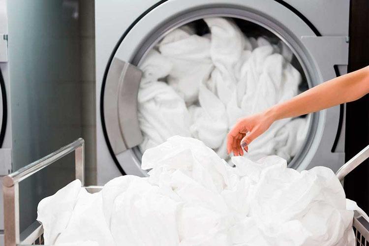Servicio de lavandería Mr Jeff
