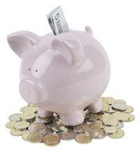 Franchise Finanzen Sparschwein