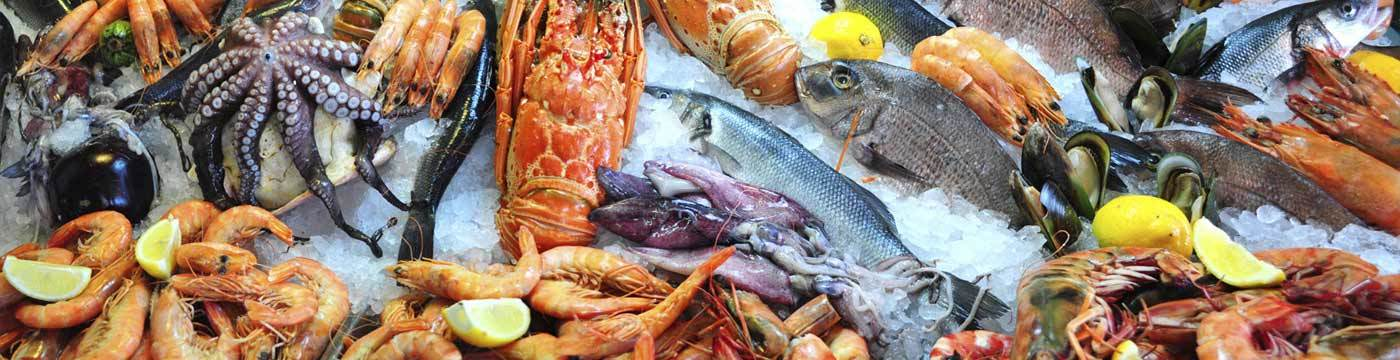 Seafood Franchise Opportunities, Seafood Restaurant