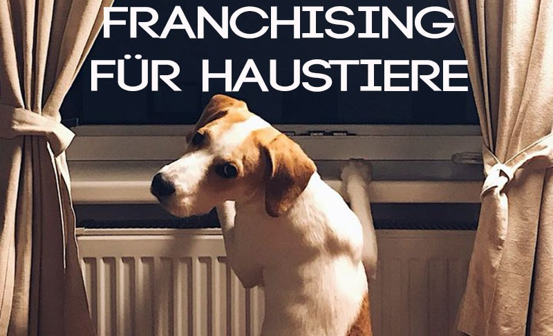 franchising haustiere banner