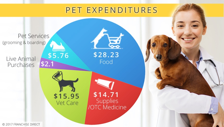 pet store industry report Industry reports used for business plans, marketing plans, and bank loans review 5 years of business financial statements (income statements / balance sheets) with each business ratio tailored to your industry.